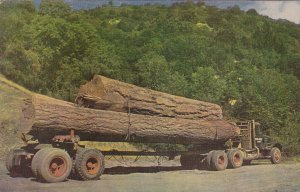 Log Truck, 1940-60s