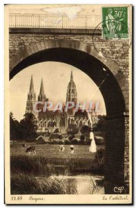 Old Postcard Bayeux Cathedral Cows