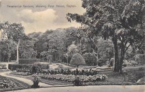 Ceylon-Sri Lanka~Palm House~Peradeniya Garden Paradise~Monotone c1910 Postcard