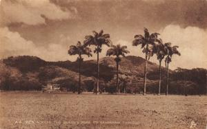 TRINIDAD BRITISH WEST INDIES-QUEENS PARK TO SAVANNAH-SEPIA-RAPHAEL TUCK POSTCARD