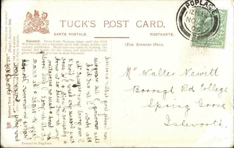 TUCK Old English Sports Falconry 1906 Used Postcard