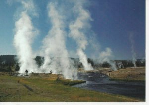 Postcard Yellowstone National Park Castle Geyser Posted 1955 Linen