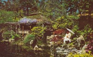 California San Francisco Japanses Tea Garden