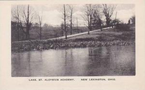 Ohio New Lexington Lake Saint Aloysius Academy Albertype