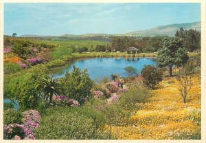 Postcard Caledon Gardens exotic flowers lake view