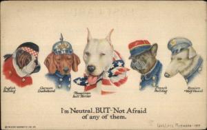 WWI Propaganda Country Dogs American Bull Terrier Dachshund Bulldog etc PC