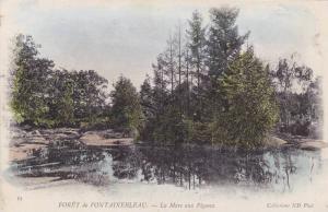 La Mare Aux Pigeons, Foret De Fontainebleau (Seine Et Marne), France, 1900-1910s