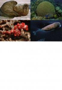Marine Life Endangered Species BIN