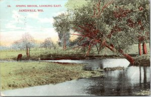 Janesville Wisconsin~Spring Brook Looking East~Cow at Edge of Creek~1908 PC