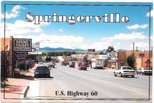 Hotel - Motel.  Springerville, Arizona
