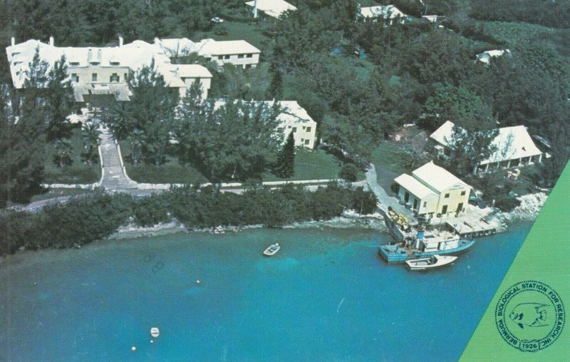 FERRY REACH , Bermuda , 1983 ; Biological Station For Research
