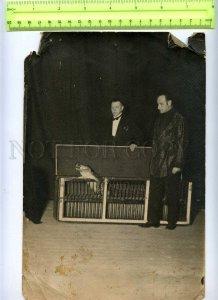 230366 USSR LENINGRAD Circus Ciniselli crocodile handlers 1920
