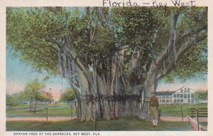 Florida Key West Banyan Tree At The Barracks Curteich