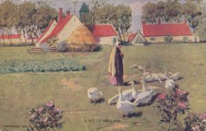 Woman enjoying the company of flock of geese, Spring Scene, A Bit of Holland...