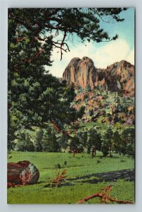 Rocky Mtn. Nat'l Park, CO-Colorado, Twin Owls, Linen Postcard