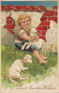 EASTER, PU-1910; Boy hugging sheep by brick wall, PFB 8390