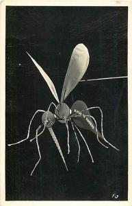 RPPC of Alaska Air Raiders Mosquito