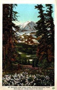Washington Rainier National Park Mt Rainier From Spray Park
