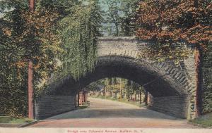BUFFALO, New York, 1908 ; Bridge over Delaware avenue