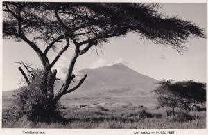 Tanganyika African Tree Real Photo Postcard