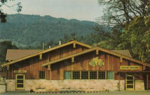 ASTI, California; 40-60s; Wine Tasting Room, Italian-Swiss Colony Winery # 2