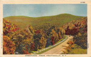 Prattsville New York~Car Traveling on Road in Mountains~Autumn Trees~1947 Pc