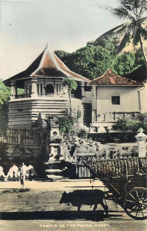 Sri Lanka Ceylon Kandy Temple of the Tooth cow cart real tinted photo postcard