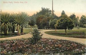 Santa Ana California~Fantastic Flora in Birch Park~1910 PC