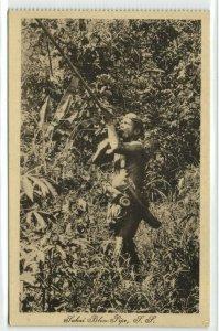 malay malaysia, Native Sakai Male Hunting with Blowpipe (1910s) Postcard
