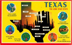 Postcard Texas The Lone Star State Posted 1985