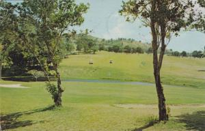 Fountain Valley Golf Course, Kineshill , V.I. , PU-1984