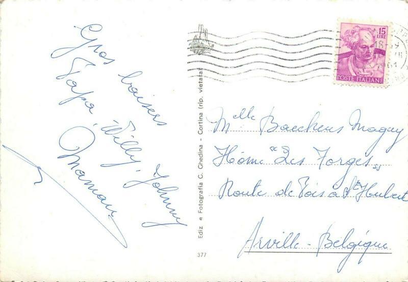 Italy Cortina panoramica alpine flowers semi-modern postcard