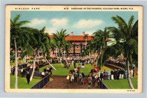 Miami FL-Florida, Hialeah Park, Horse Track Parade Paddock Area, Linen Postcard