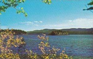 Canada Mcleod Lake Williams Lake British Columbia
