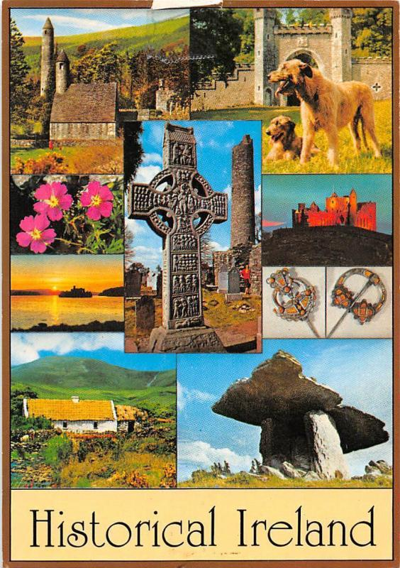 Historical Ireland (people & places) different aspects, dogs cross flowers 1989