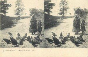 Postcard Stereographic image life scene birds feeding