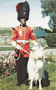 Corporal in charge of Baptiste, the goat mascot of the 22e Regiment at La ...