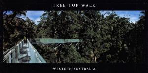Large Size Panorama Postcard, Tree Top Walk, Western Australia 210x105mm #948