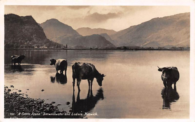 Cumbria Keswick A Cattle Scene Derwentwater and Lodore, Cattle