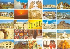 Tunisie Tunisia multiviews souvenir Camels, Ruins Promenade Oranges Panorama