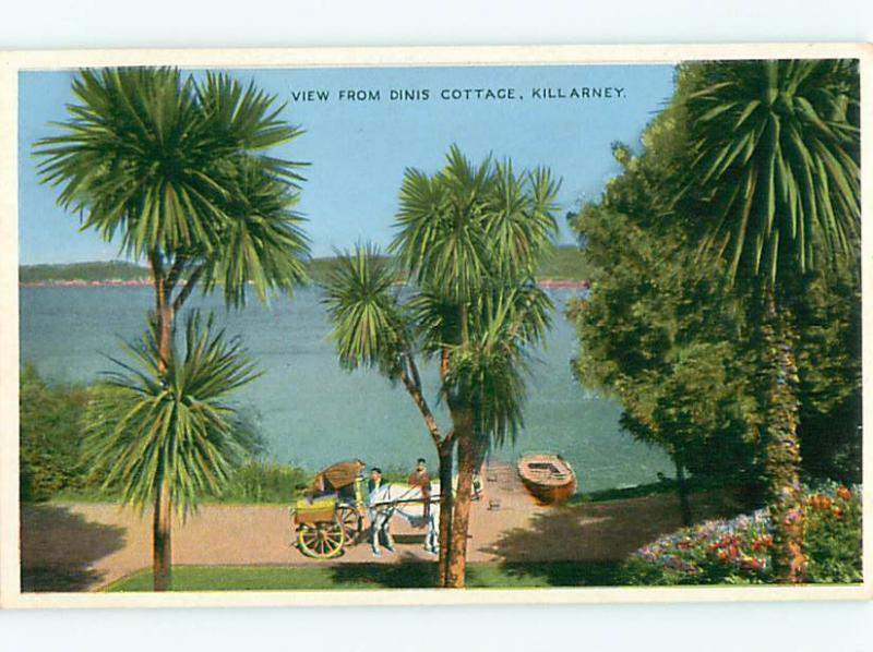 Vintage Post Card Cottage Wagon Horse Beach Dinis Killarney Ireland   # 3700