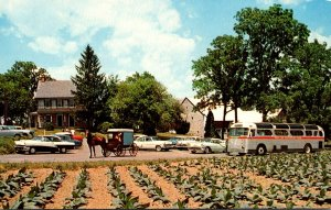 Pennsylvania Lancaster The Amish Farm & House