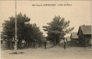 CPA Camp de COETQUIDAN Allée des Sapins (145039)