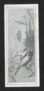 VICTORIAN TRADE CARD California Theater Birds Singing