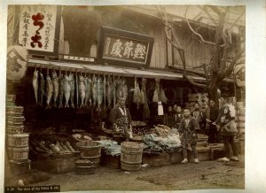 231196 JAPAN Store dry fishes women CABINET two tinted PHOTOS