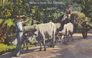 Puerto Rico , 30-40s ; Ox Cart on Country Road