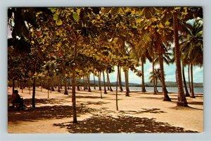 Puerto Rico- Caribbean, Luquillo Beach, Tropical Paradise, Chrome Postcard