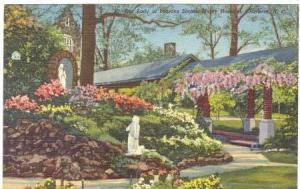 Our Lady of Shrine, Mercy Hospital, Charlotte,North Carolina,30-40s
