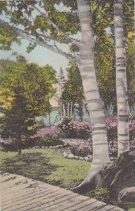 Michigan Les Cheneaux Islands Gardens At Islington Albertype