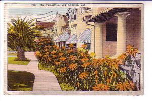 Houses with Poinsettias Los Angeles, California, Used 1923